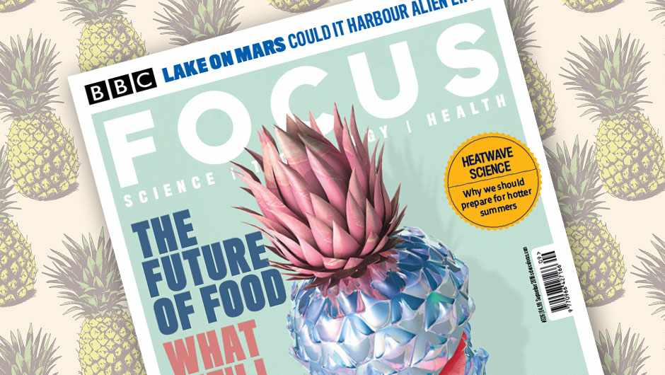 The Future of Food © Blake Kathryn