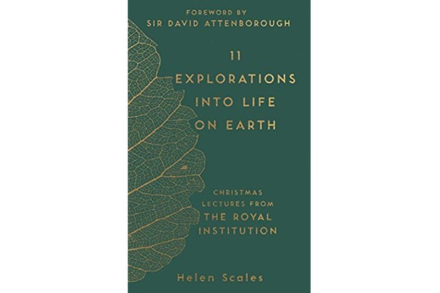 11 Explorations into Life on Earth by Helen Scales, with a foreword by Sir David Attenborough is out now (Michael O'Mara Books)