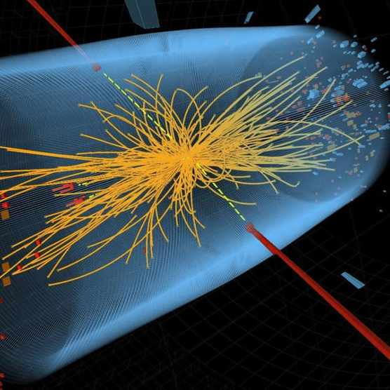 What has the discovery of the Higgs boson taught us? © CERN