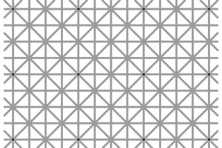 The 12 dots illusion by Jacques Ninio