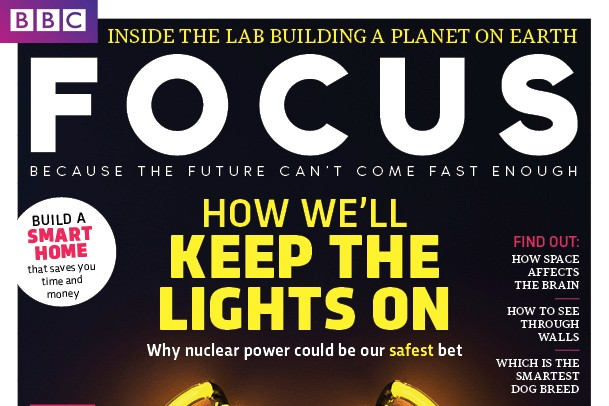 Focus cover 292 neon layouts