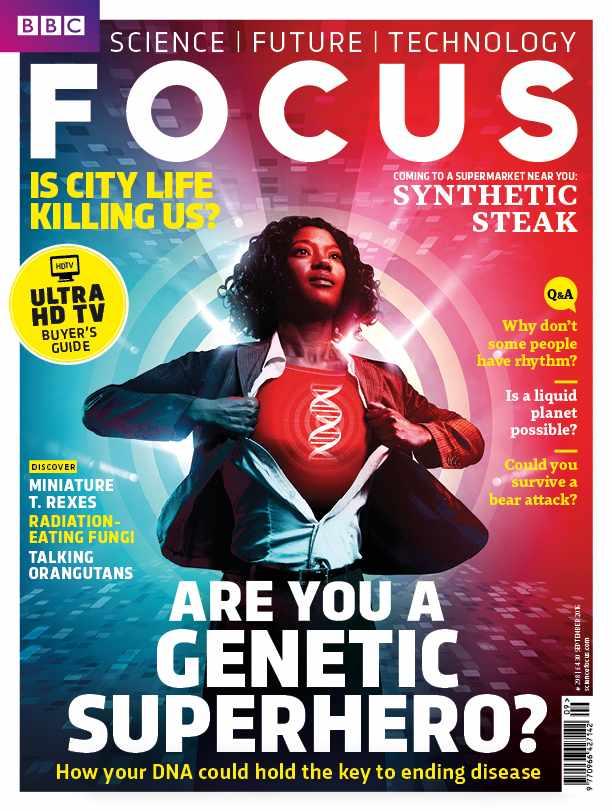 Focus cover 293 HERO COVER