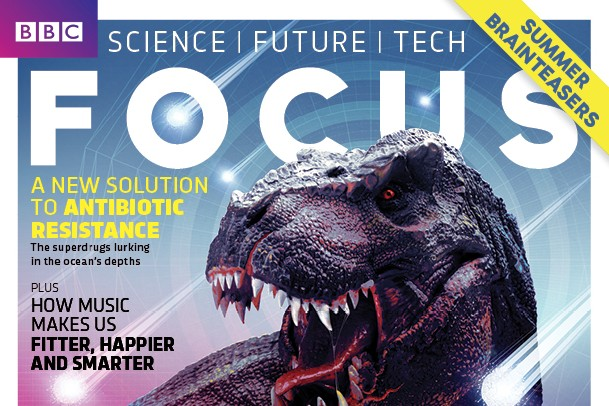 Focus cover 297dino v6 no barcode