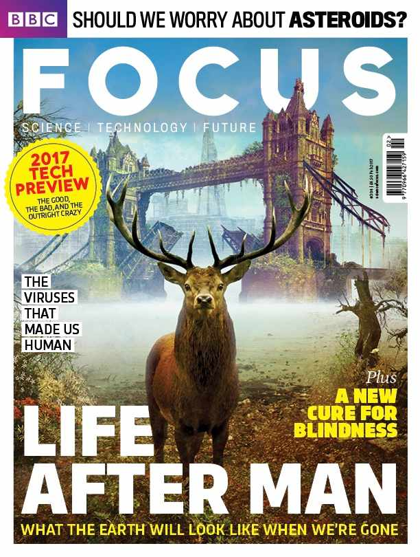Focus cover 304 COVER