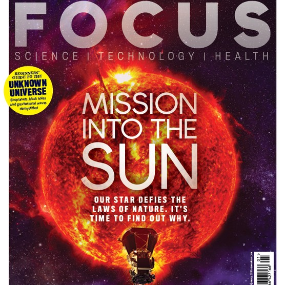 Focus cover 317 COVER