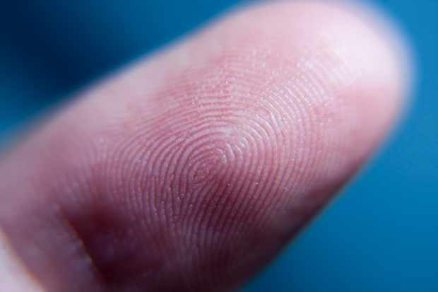 Why do we have fingerprints? © Getty Images