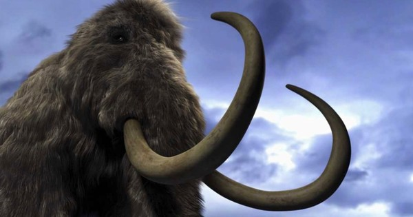 Could we clone a mammoth or a dinosaur?