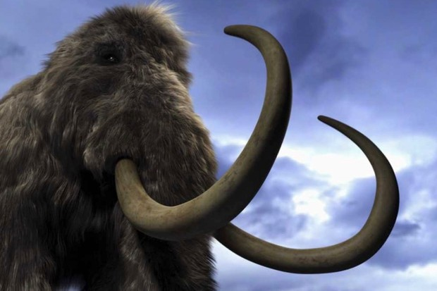 Could we clone a mammoth or a dinosaur? © Getty Images