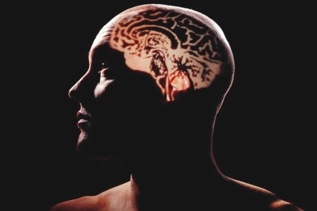 Why are human brains so big? © Getty Images