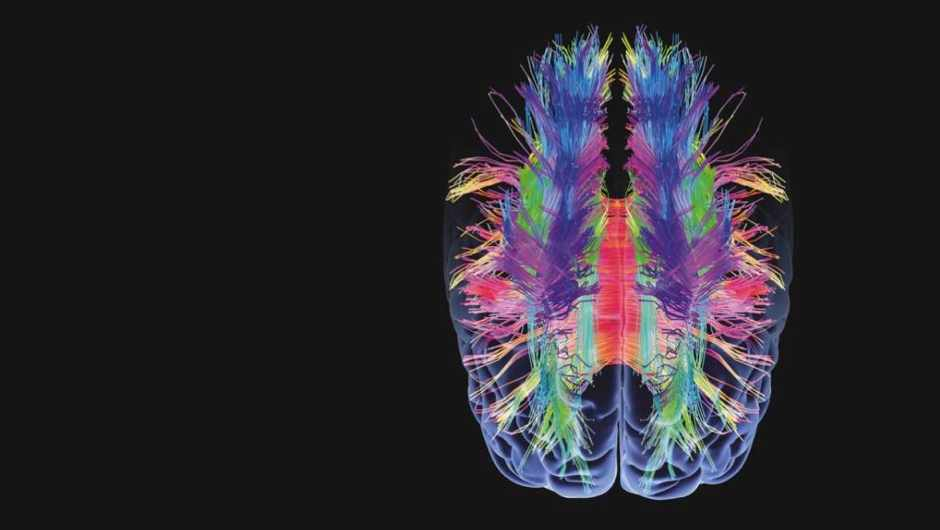 What happens in your brain when you make a memory? © Getty Images