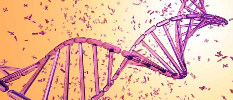 How long does DNA last? © Getty Images