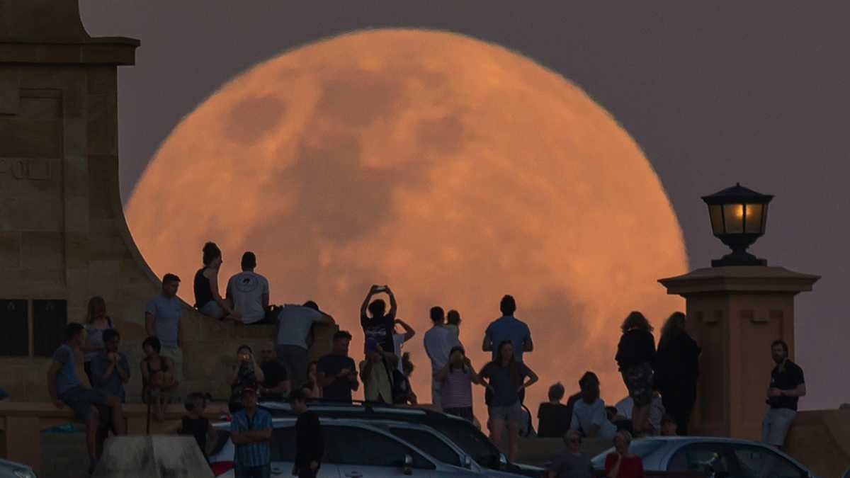 Crowds look on as the super moon rises behind the Fremantle War Memorial at Monument Hill on November 14, 2016 in Fremantle, Australia © Paul Kane/Getty Images