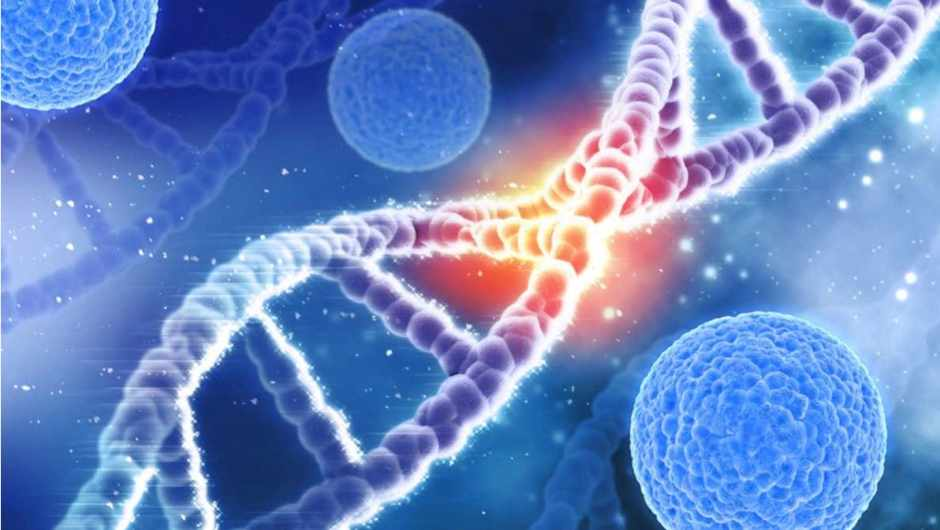 How long is your DNA? © Getty Images