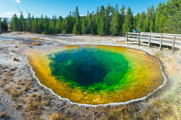 Morning Glory Pool, Yellowstone NP in Upper Geyser Basin, Yellowstone National Park © Elena Pueyo/Getty Images