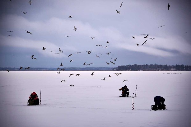 Men, surrounded by seagulls, are ice-fishing at midday on the barely frozen Bothnia Sea, Western Finland © Olivier Morin/AFP/Getty Images