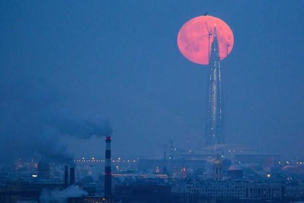St Petersburg, Russia © Peter KovalevTASS via Getty Images