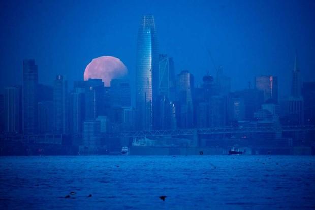 San Francisco, USA © Josh Edelson/AFP/Getty Images