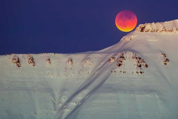 Svalbard, Norway © Heiko Junge/AFP/Getty Images