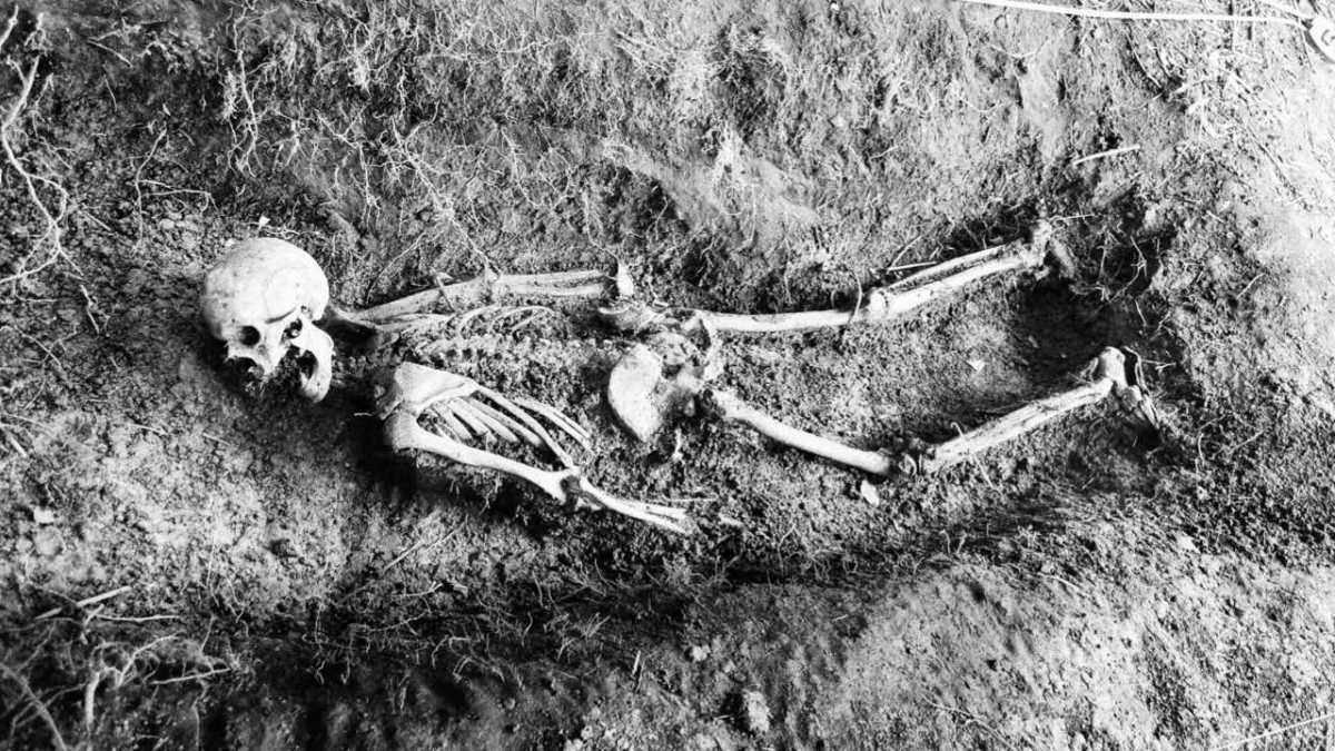Here's what happens when your dead body is left to rot (plus a few, more practical, uses for it) © FBI Photo Library