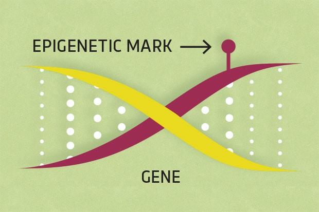epigenetic-marks
