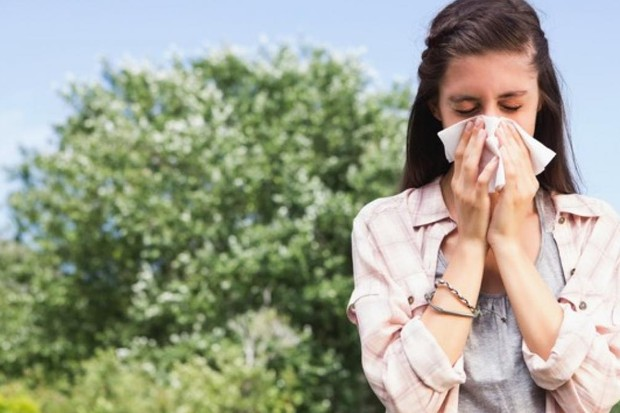 Do allergies, such as hay fever, follow cycles? © Getty Images