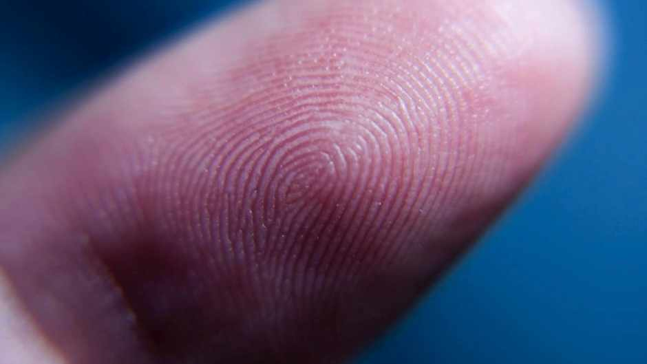 Can fingerprints change during a lifetime? ©iStock
