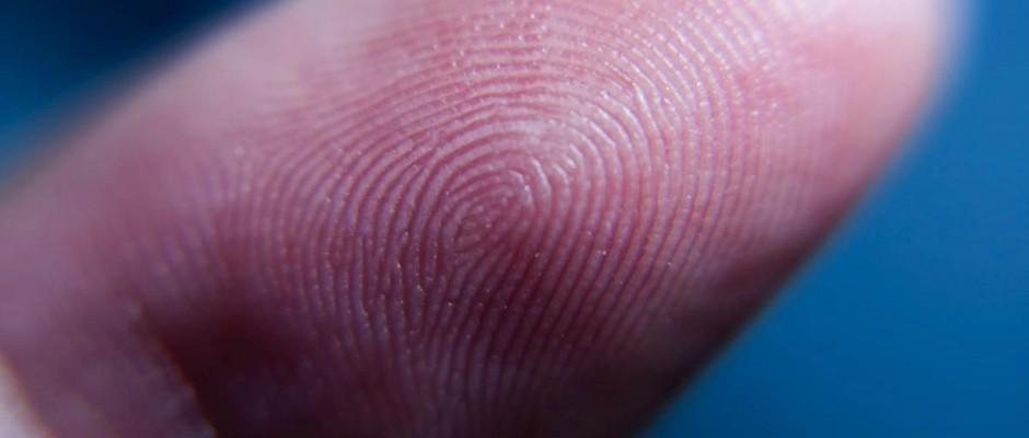Can Fingerprints Change During A Lifetime Bbc Science Focus Magazine
