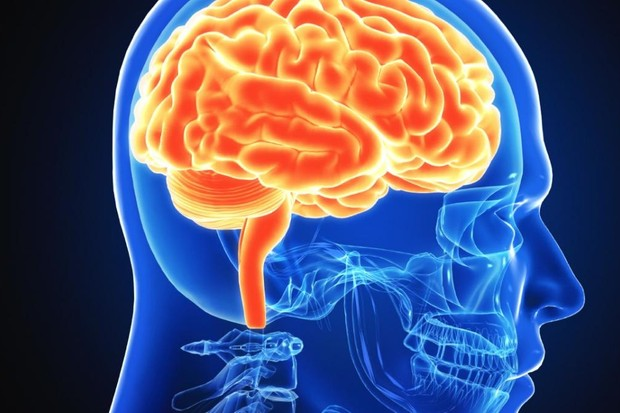 What is fMRI? © iStock