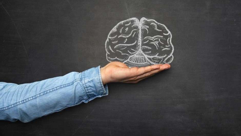 Could a brain be kept alive independently of a body? © iStock