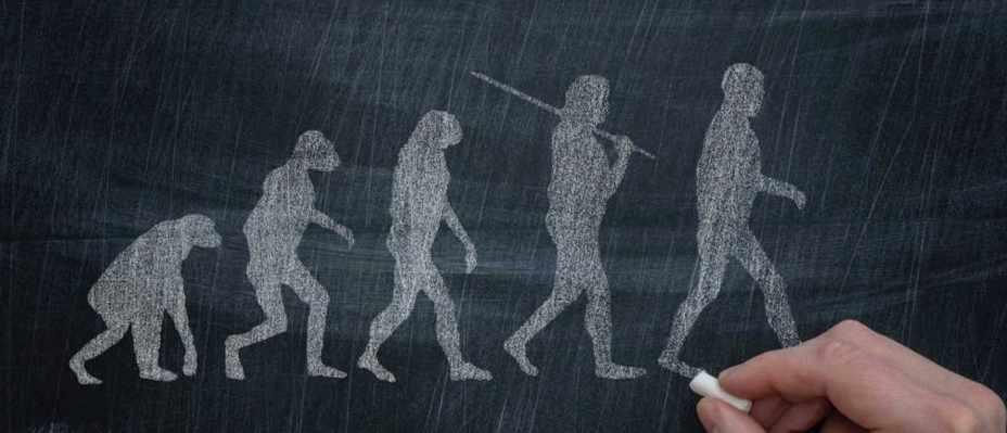 Are we descended from Neanderthals? © iStock