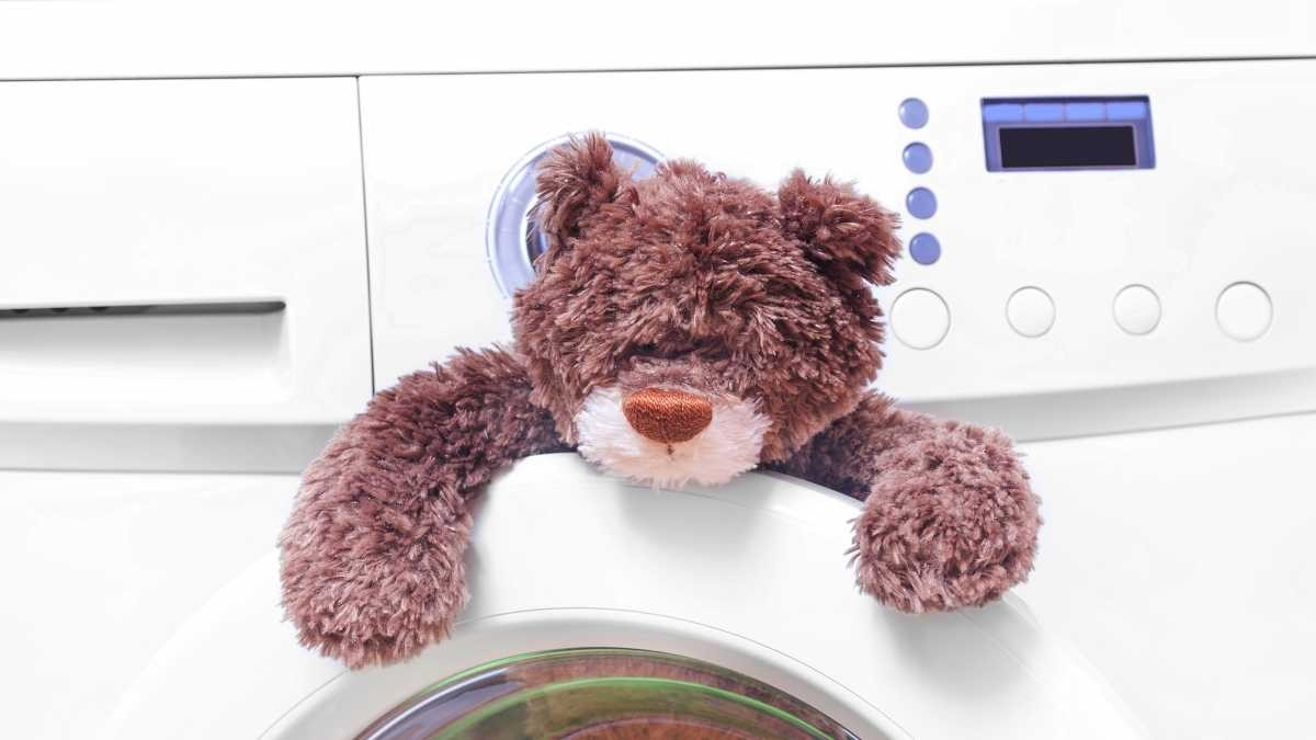 What happens to a teddy bear in a washing machine? © Getty Images
