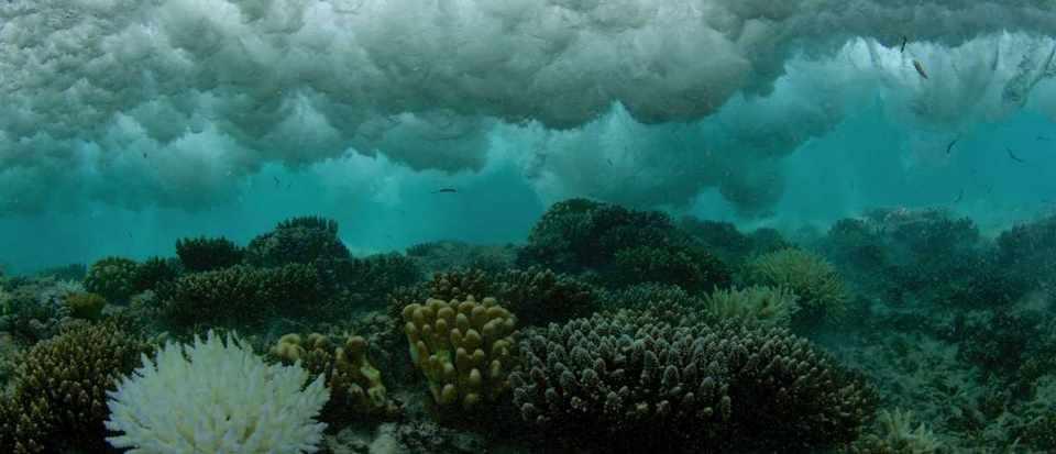 When is the next El Niño? © iStock