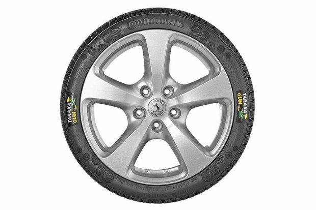 Can we make tyres from dandelions?