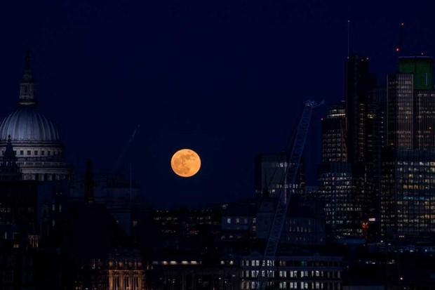 London, United Kingdom © Chris J Ratcliffe/Getty Images