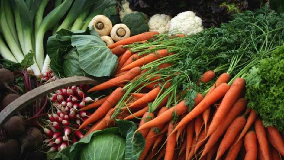 Are organic vegetables healthier than GM vegetables?