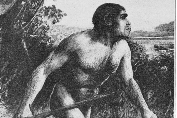 Reconstruction of Eoanthropus dawsoni, via Wikimedia Commons