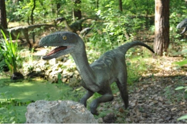 Velociraptor © Thinkstock