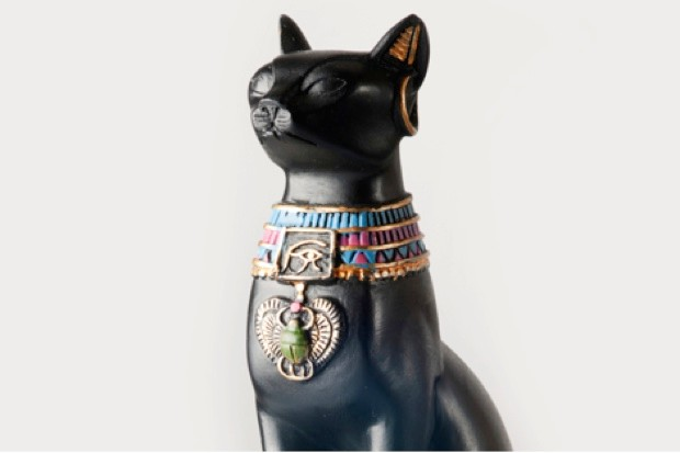 Myth #7: Domestic cats can be traced back to ancient Egypt