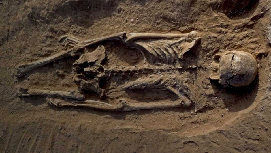 Grisly prehistoric massacre shows signs of first known war