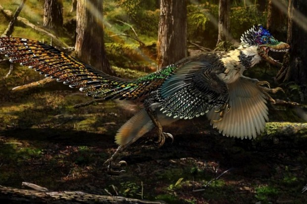 New species of dinosaur proves Jurassic Park wrong