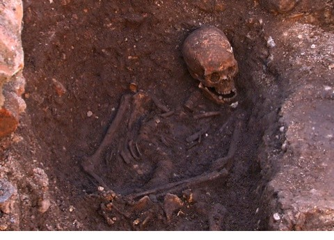 Richard III's remains found at the Grey Friar's site © University of Leicester