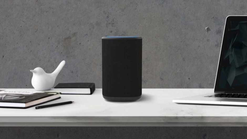 Vaux Amazon Echo Dot speaker