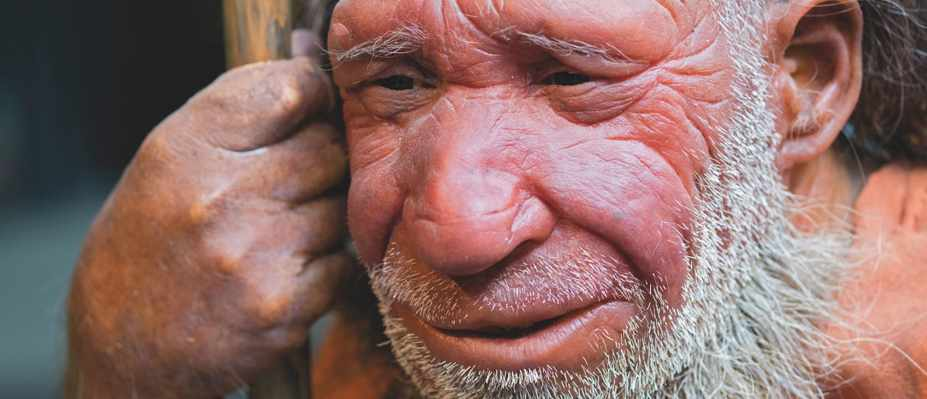 Why Neanderthals aren't the brutish, primitive species we once thought © Alamy