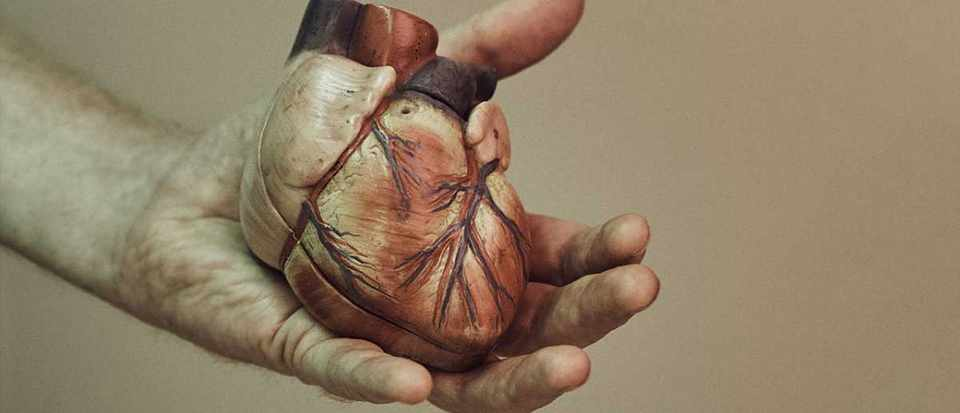 The engineer who fixed his own heart