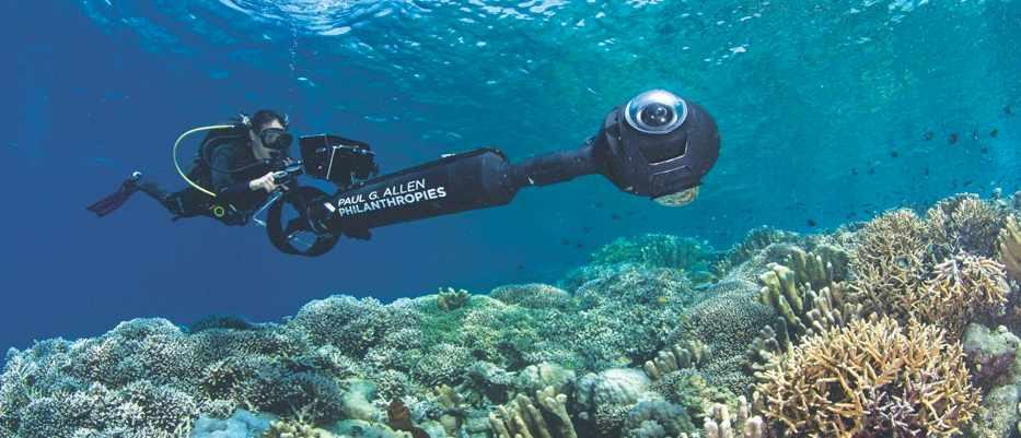 © the ocean agency/paul g allen philanthropies,