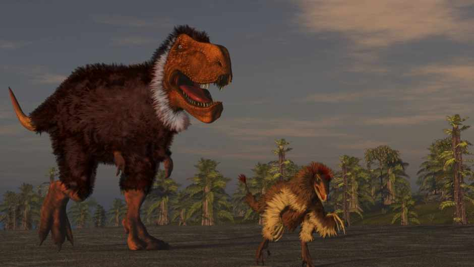 Did all dinosaurs have feathers? © Getty Images