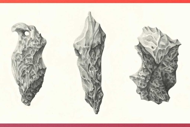 Mosaic-Human Evolution-Tom Sewell Rock Tool