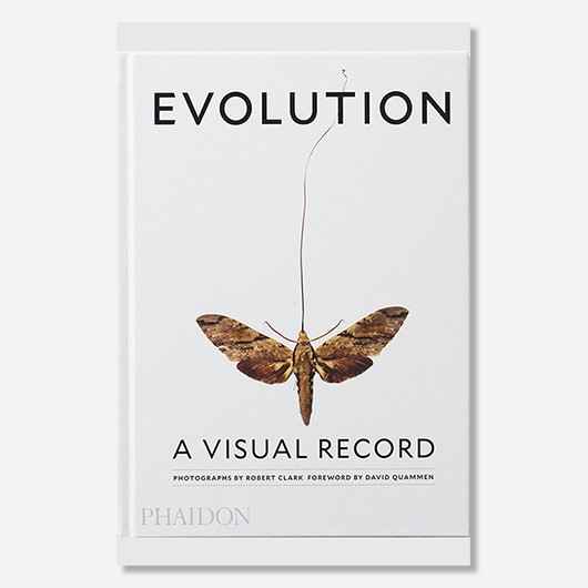 Evolution: A Visual Record by Robert Clark and text by Joseph Wallace is available to buy now (Phaidon, £24.95)