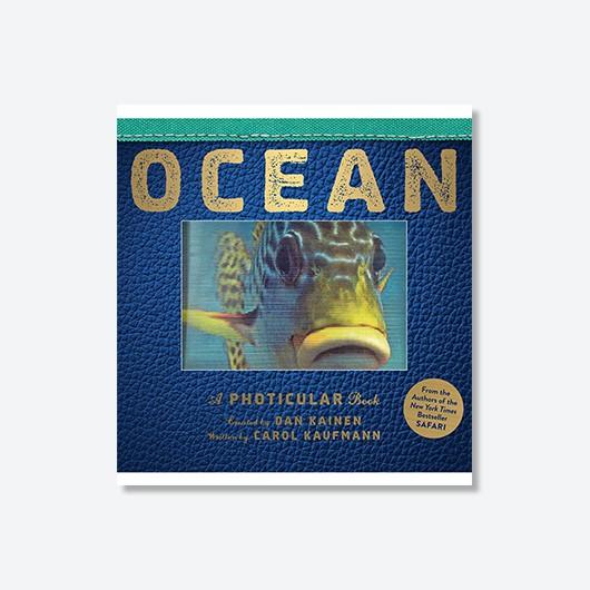 Ocean – Dan Kainen and Carol Kaufmann £17.99