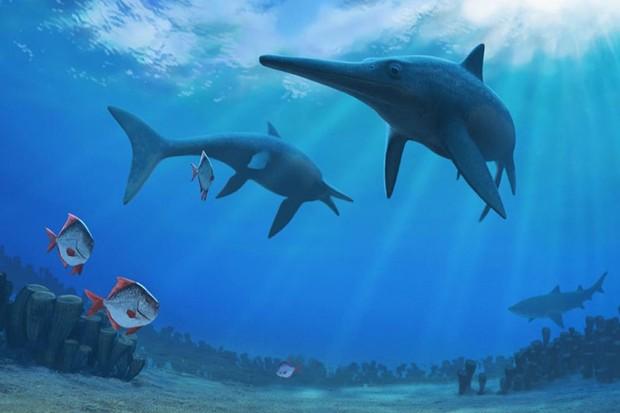 Ichthyosaurs – good at swimming, less so at evolution © Andrey Atuchin 2016